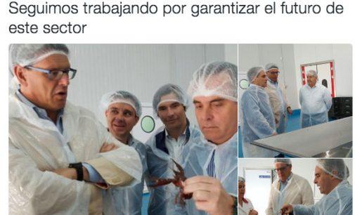 El PP-Sevilla busca líder, razón en la pescadería