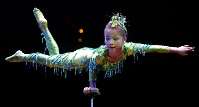 El PP de Sevilla en el Cirque du Soleil